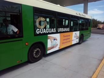 guaguaarrecife2